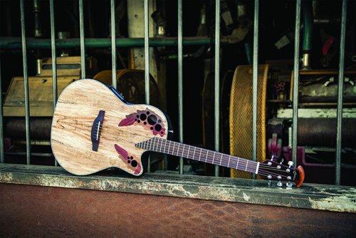 [AG杂志]Drum Workshop收购Ovation|Fender一系列融资后销量大增 AG268