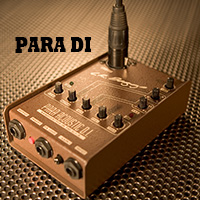[视频测评]L.R.Baggs Para DI 五均衡 民谣电箱吉他 DI