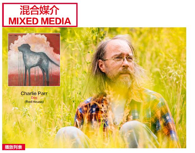 [AG品鉴]Charlie Parr的吉他为沉郁的专辑带来一抹轻松 忧郁艺术的胜利 AG300